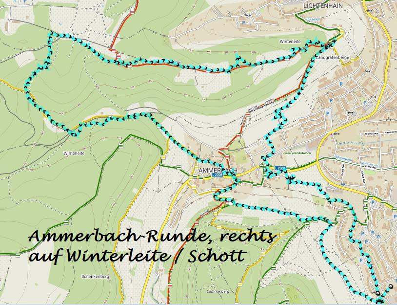 180613 Ammerbach,re mWinterleite 10,5