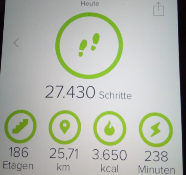 170424 Fitbit