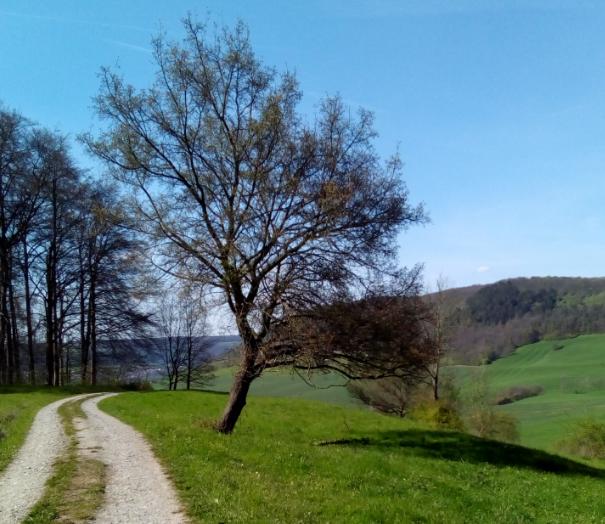 170424 Landschaft